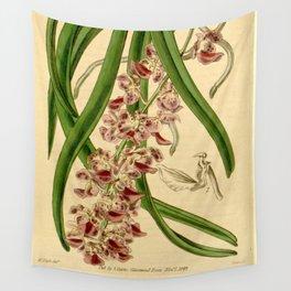 Aerides multiflora Wall Tapestry
