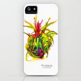 Tillandsia Streptophylla Air Plant iPhone Case