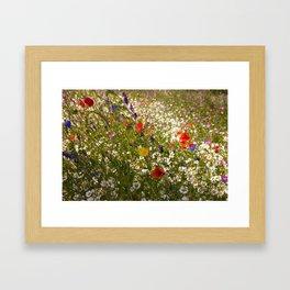 English Meadow Flowers Framed Art Print