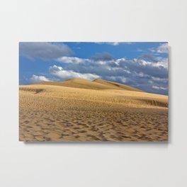 Dune du Pilat Metal Print
