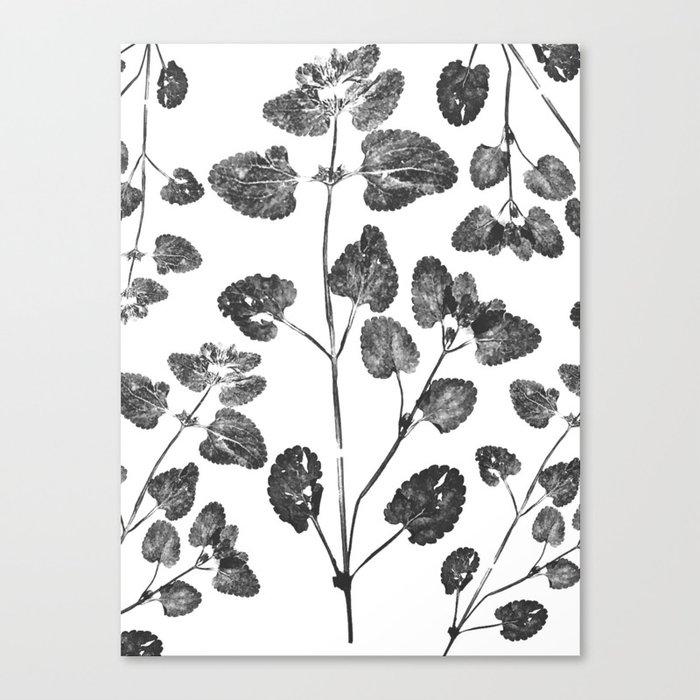 Dead Leaves Canvas Print