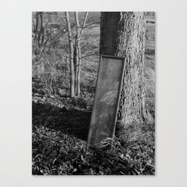 Mirror by Tree. Canvas Print