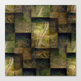 Forest on boxes Canvas Print
