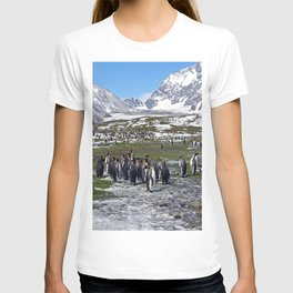 King Penguins, Snow and Glaciers T-shirt
