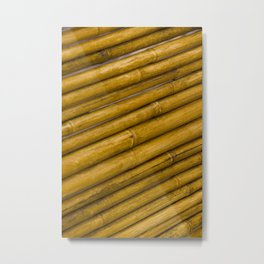Bamboo Pattern / Texture from a Japanese Garden Metal Print