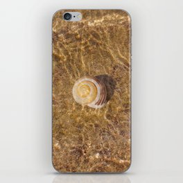 Shell universe iPhone Skin