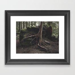 Finding Ground Framed Art Print
