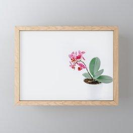 PINK PETALED FLWOER Framed Mini Art Print