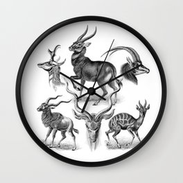 Ernst Haeckel's Antilopinae Wall Clock
