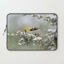 Spring Blizzard (American Goldfinch) Laptop Sleeve