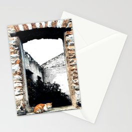 Cat in the Abandoned Home Window Stationery Cards
