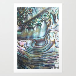 Shimmery Pastel Abalone Shell Art Print