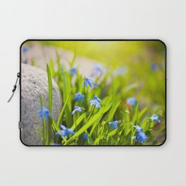 Scilla siberica flowerets named wood squill Laptop Sleeve
