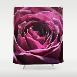 Deep Plum Purple Rose Center Roses Bud Pretty Cute Photo Realism Shower Curtain