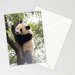 Chongqing Baby Giant Panda | Bébé Panda géant Stationery Cards
