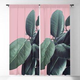Ficus Elastica #14 #CoralBlush #decor #art #society6 Blackout Curtain