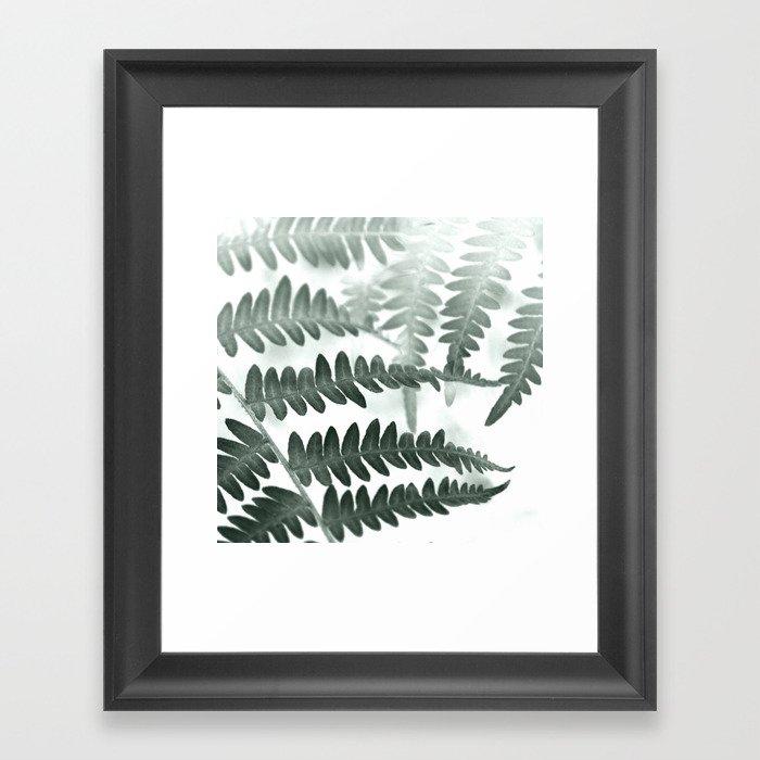 Fern Textures Framed Art Print