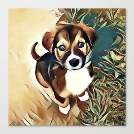 A Saint Bernard Puppy Canvas Print