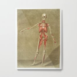 This fascinating collection of anatomical illustrations is created by Arnauld-Eloi Gautier-Dagoty (1 Metal Print