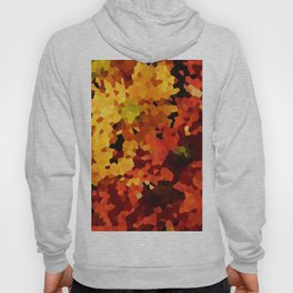 Yellow and Red Sunflowers Hoody