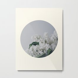Comforting White Flowers Metal Print