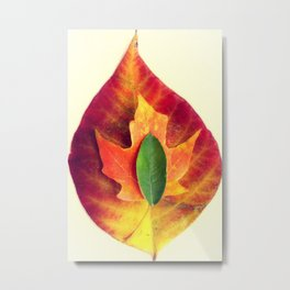 Stackable Leaves II Metal Print