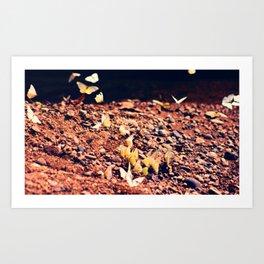 Butterfly park Art Print