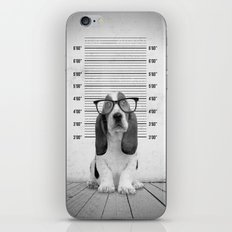 Guilty Puppy iPhone & iPod Skin