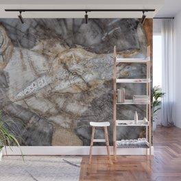 Petrified wood 3266 Wall Mural