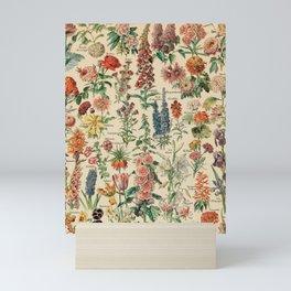 Adolphe millot 1800s fleur E Mini Art Print