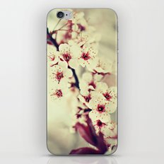 May Flowers iPhone & iPod Skin
