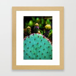 Cactus In The Garden Framed Art Print