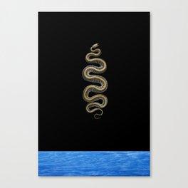 snkskell_61010 Canvas Print