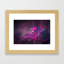 Natural Studies  Framed Art Print