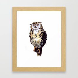 Eule Framed Art Print