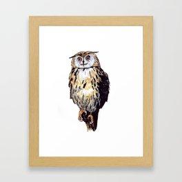 Eule Framed Art Print