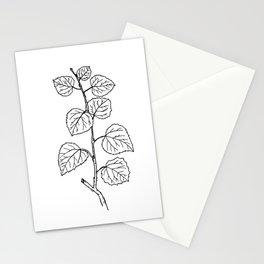 Aspen Branch Minimalism Stationery Cards