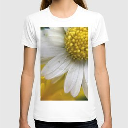 Daisies, Love, & Math T-shirt