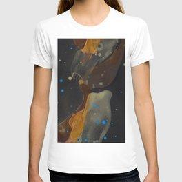 joelarmstrong_rust&gold_046 T-shirt
