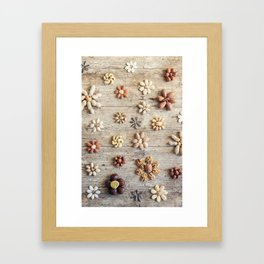 Dried fruits arranged forming flowers (4) Framed Art Print