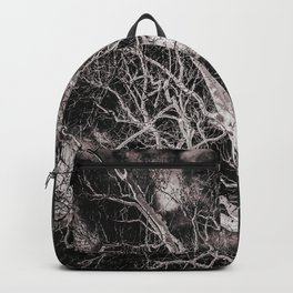 American Sycamore Plantanus Occidentalis Morgantown West Virginia Black and White Backpack