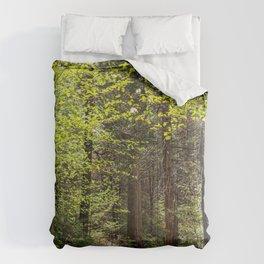 Forest Trail - Yosemite's Wawona Loop Trail Comforters