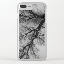 Lungs of the Earth   Nature Photography   Weeping Willow   Black and White   black-and-white   bw Clear iPhone Case