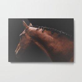 Cinnamon - fine art horse print Metal Print