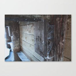 Frosted Cobwebs Canvas Print