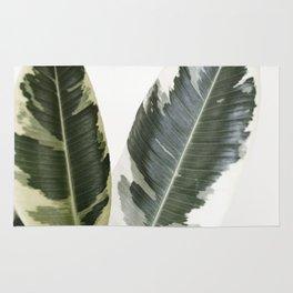 variegated rubber plant 01 Rug