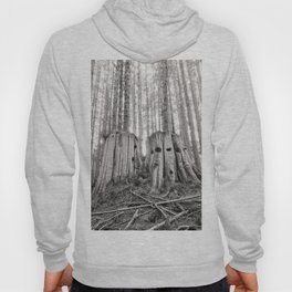Nurse Stump Pacific Northwest Forest Cedar Trees Sepia Print Hoody