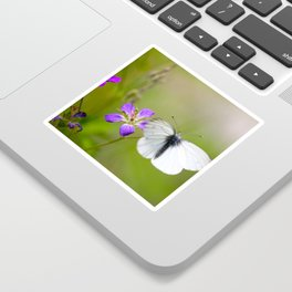 White Butterfly Natural Background Sticker