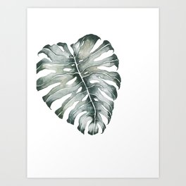Monstera Leaf Grey Green Art Print