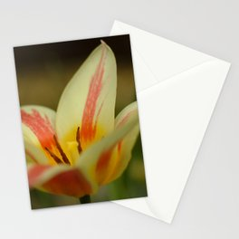 Aprils garden Tulip Stationery Cards